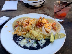 Fat Fish Cantina Grill - New Kid on the Guac